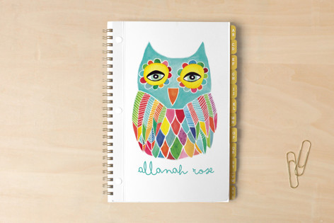 Watercolor Rainbow Owl Notebooks