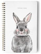 Baby Animal Rabbit