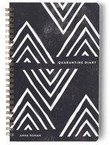 This is a blue journal by Amber Barkley called Quarantine Diary with standard printing on premium cover stock in notebook.