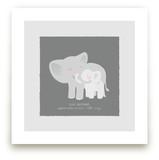 A Mother's Love - Elephants