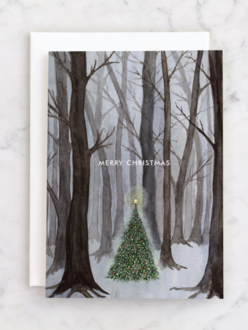 Silent Night Woods