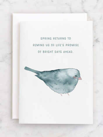 Blushing Bird 2