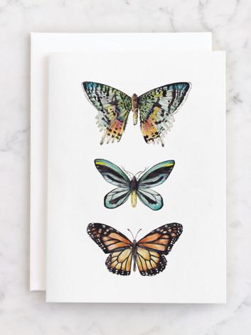 Butterfly Watercolors