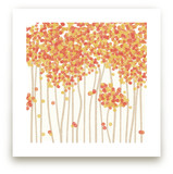 Nature's Confetti