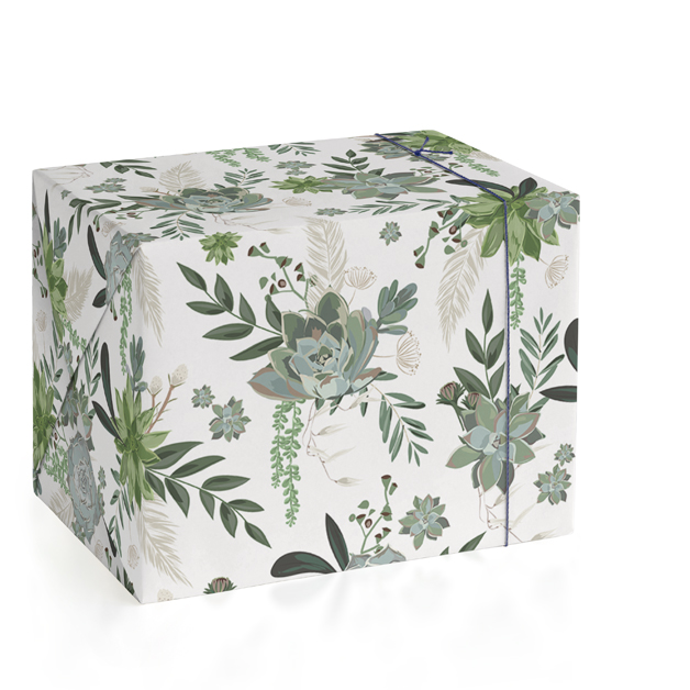This is a green wrapping paper by Susan Moyal called Wrapped in Succulents.