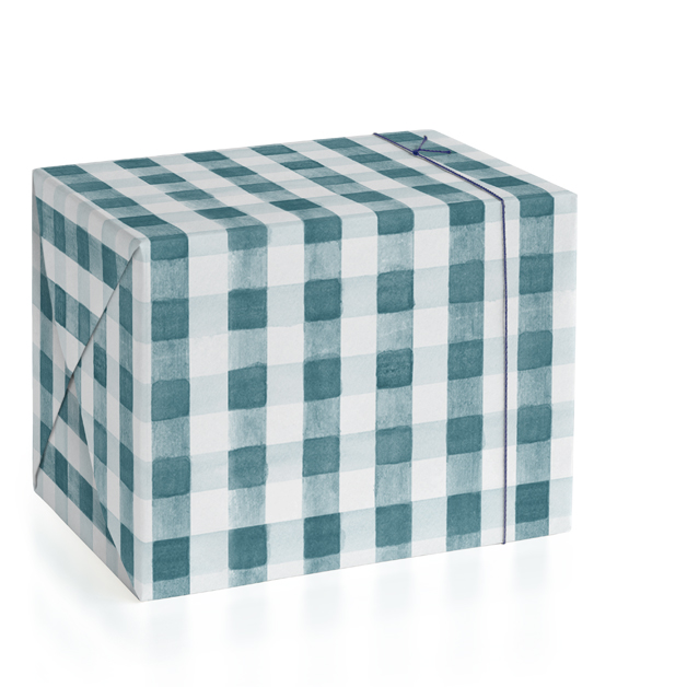 This is a blue wrapping paper by Tessa Blackham called Watercolor Gingham.