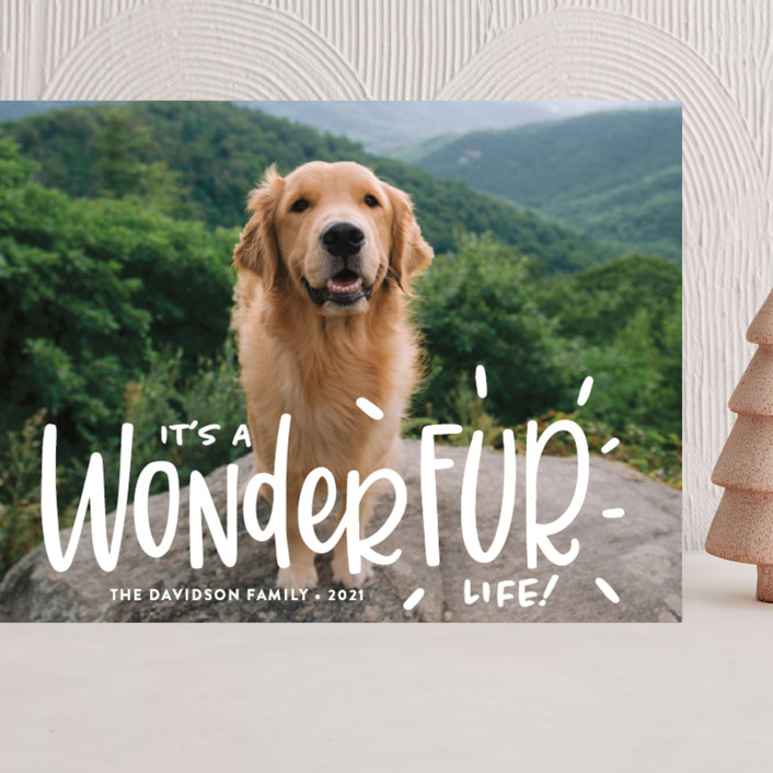 """""""It's a Wonder-FUR Life"""" - Funny Grand Holiday Cards in Snow by Sandra Picco Design."""