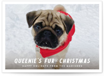 This is a white holiday photo card by Up Up Creative called Furst Christmas with standard printing on smooth signature in grand.