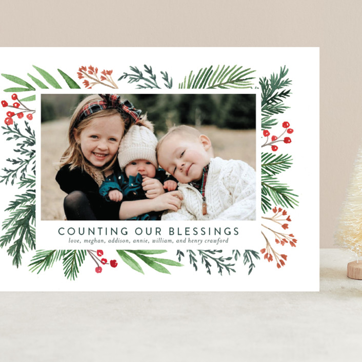 """""""Evergreen Olio"""" - Grand Holiday Cards in Snowflake by Amy Kross."""