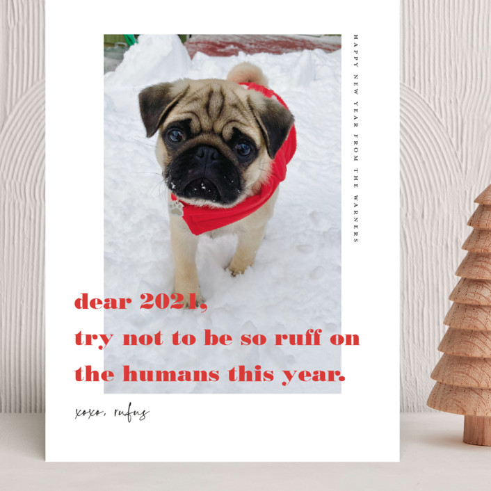 """dear 2021"" - Funny Grand Holiday Cards in Cranberry by Frooted Design."