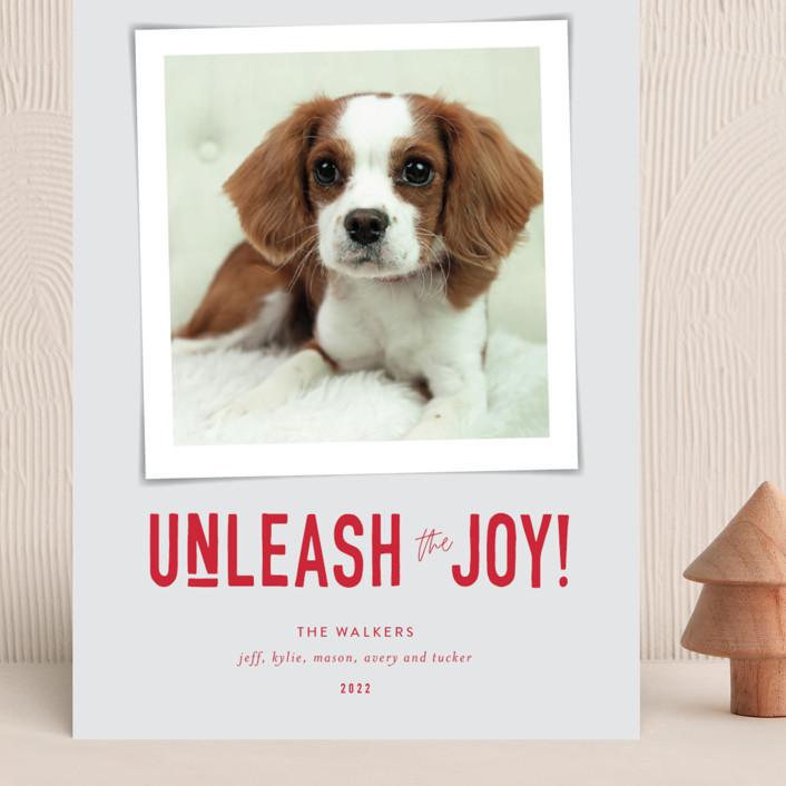 """""""Unleash the Joy"""" - Funny Grand Holiday Cards in Cardinal by Robin Ott."""