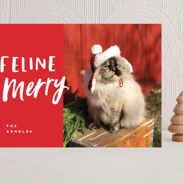 """""""Feline Merry"""" - Funny Grand Holiday Cards in Santa Suit by Chryssi Tsoupanarias."""