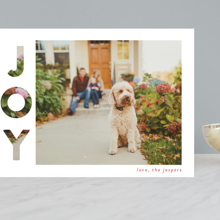 """""""Revealing Joy"""" - Grand Holiday Cards in Snow by Lindsay Megahed."""