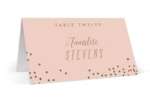 This is a pink wedding place card by Lori Wemple called Bubbly with foil-pressed printing on signature in placecard.