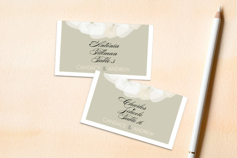 Modern Tulle Wedding Place Cards