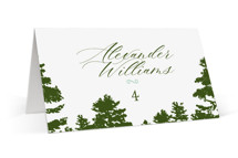 This is a green wedding place card by Ariel Rutland called Mountain View with standard printing on signature in placecard.