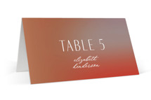 This is a orange wedding place card by Simona Camp called Retro Grid with standard printing on signature in placecard.