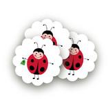 Little Ladybug