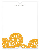 Sliced Citrus