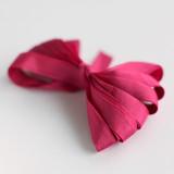 Fuchsia Shimmer