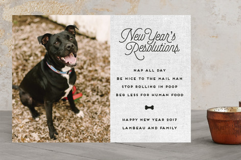 New Year's Resolutions New Year's Photo Cards