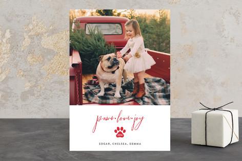 Paws, Love, Joy Holiday Photo Cards