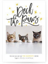 Deck The Paws by Lisa Cersovsky
