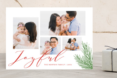 Joyful Holiday Wishes Holiday Photo Cards