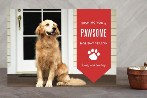 Pawsome Holidays Holiday Photo Cards