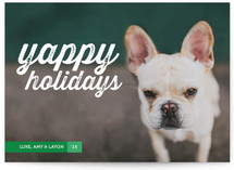 Yappy Holidays by Jessica Booth