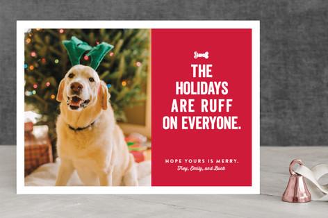 Ruff Holiday Photo Cards