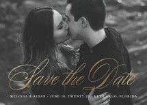 Timeless Love Story Foil-Pressed Save the Date Cards By Julia Hall