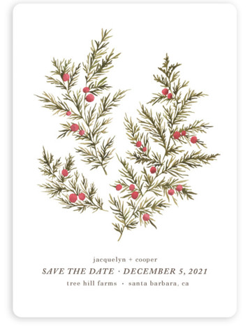 This is a portrait botanical, red Save the Dates by Wildfield Paper Co. called Botanical No. 4 with Standard printing on Magnet Paper in Magnet Flat Card format. A bold, elegant, simple and fresh design to compliment your favorite photo! ...