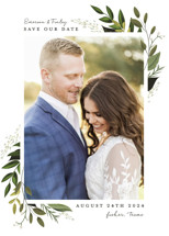 Vines of Green Save the Date Cards By Susan Moyal