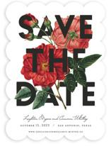 Daring Date