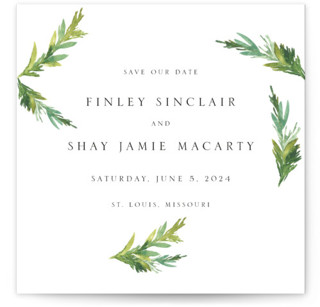 Simple Pine Branches Save The Date Cards