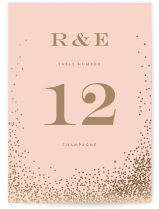 Bubbly Foil-pressed Table Numbers