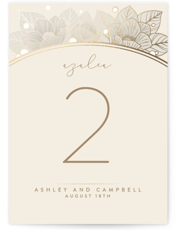 This is a beige Table Numbers by GeekInk Design called Resplendent with Foil Pressed printing on Signature in Classic fold over (blank inside) format. Beautiful vintage style flowers and leaves frame your information in this wedding invite.