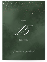 This is a green table number by Leah Bisch called Evergreen with foil-pressed printing on doublethick in standard.