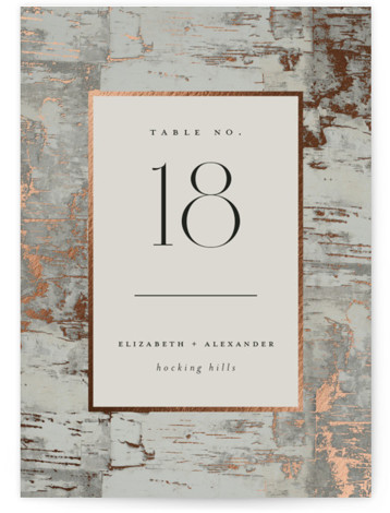 Gilded birch bark Foil-Pressed Table Numbers