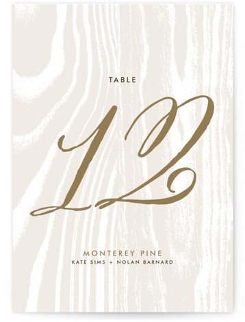 This is a portrait bold typographic, rustic, brown Table Numbers by annie clark called Big Sur with Standard printing on Luxe Museum Board in Classic Flat Card format. Table numbers come in a flat or folded format. Select from our ...