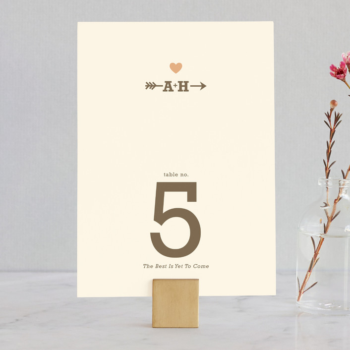 """""""Love Struck"""" - Rustic, Simple Wedding Table Numbers in Pale Salmon Peach by The Social Type."""