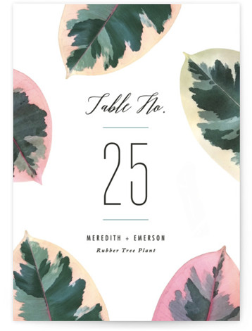 This is a botanical, green Table Numbers by Hooray Creative called Painterly Plant with Standard printing on Luxe Museum Board in Classic Flat Card format. Table numbers come in a flat or folded format. Select from our Signature, Premium 100% ...