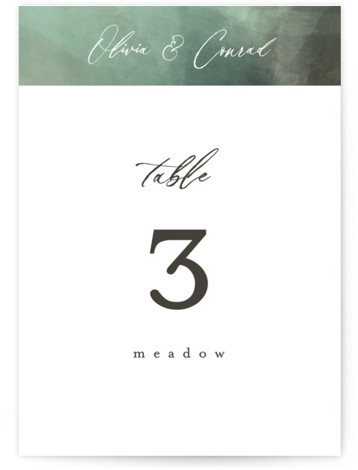 This is a painterly, green Table Numbers by Eric Clegg called Meadow with Standard printing on Signature in Classic fold over (blank inside) format. This sophisticated wedding announcement features a richly textured painted background creating a dramatic look.
