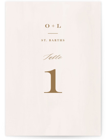 This is a classic and formal, brown, pink Table Numbers by Carolyn MacLaren called Crush with Standard printing on Signature in Classic fold over (blank inside) format. Romantic type paired with a watercolor background. Perfect for a vineyard wedding.