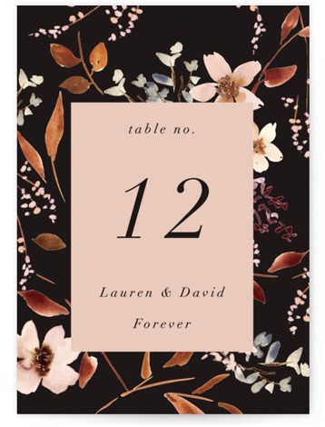 Silky Way Table Numbers