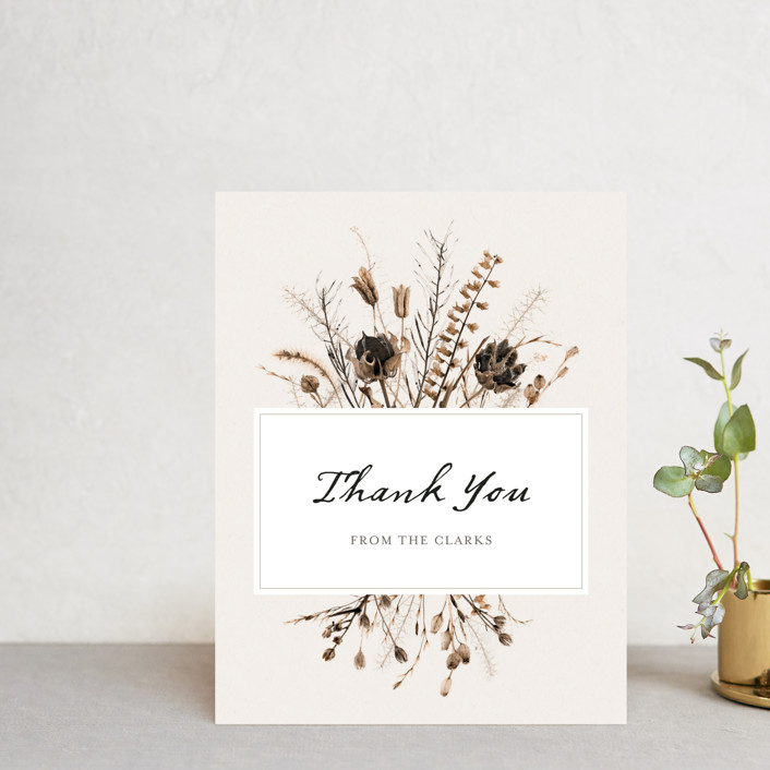 """""""Gone To Seed"""" - Bohemian Thank You Postcards in Taupe by Honeybunch Studio."""
