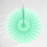 This is a green tissue paper fan by Minted called Mint Petal.