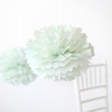 "This is a green tissue paper pom pom by Minted called Mint 14""."