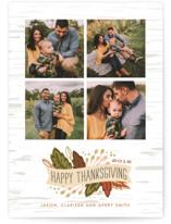 Birch Thanksgiving Banner